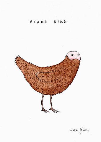 beard-bird